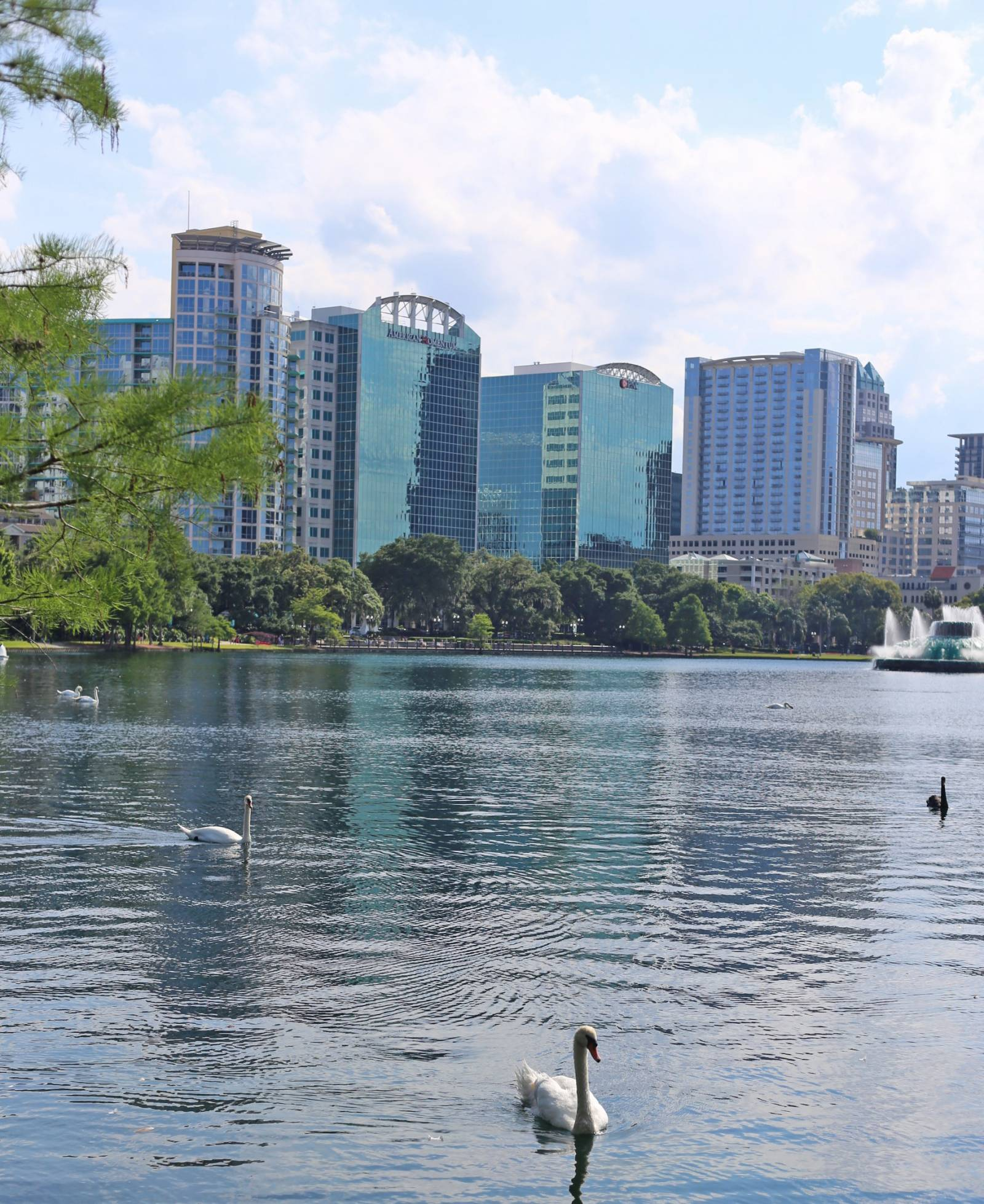 the best places to visit in orlando, florida | Lake Eola | what to do in orlando | Living in orlando | Mash Elle beauty blogger | palm trees | Florida