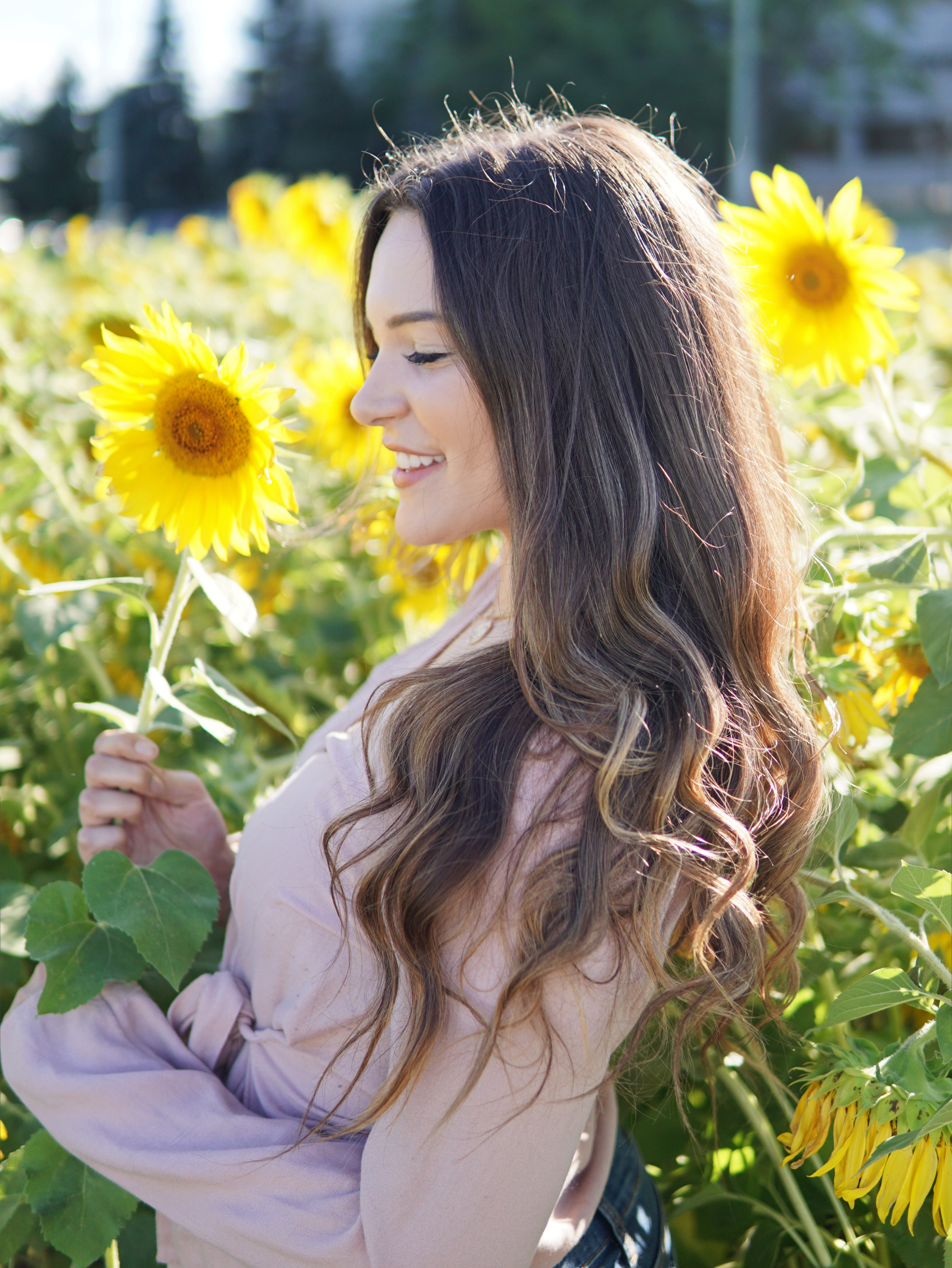 Mash Elle | hello fall hair care | changing seasons | sunflowers | hairstyle fall